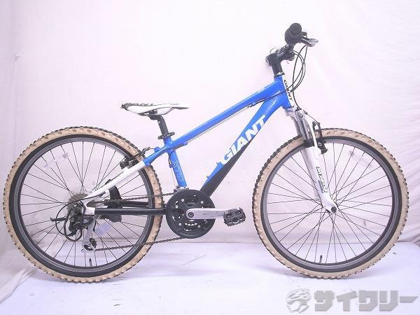 XTC 24